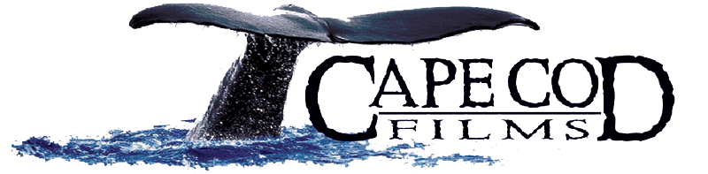 Cape Cod Films